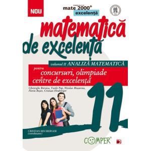Matematică de excelență. Pentru concursuri, olimpiade și centrele de excelență. Clasa a XI-a. Volumul 2 – analiză matematică