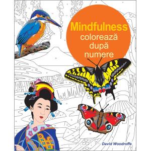 Colorează după numere - Mindfulness