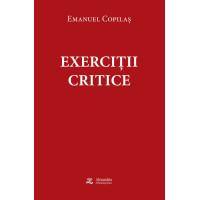 Exerciții critice. Publicistică, polemici, interviuri