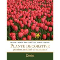 Plante Decorative Pentru Grădini și Balcoane