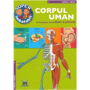 Corpul uman. Să înțelegem totul dintr-o privire