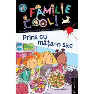 O familie cool - Vol IV - Prins cu mâța-n sac