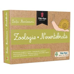 Lecții Montessori - Zoologie • Nevertebrate