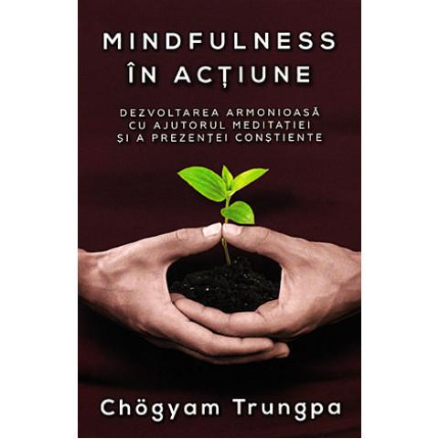 Mindfulness în acțiune. Dezvoltarea armonioasă cu ajutorul meditației și a prezenței conștiente