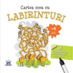 Cartea mea cu labirinturi - 46 de labirinturi refolosibile + o cariocă