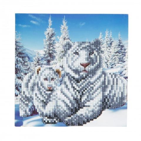 Set creativ tablou cu cristale Snowy White Tigers 18x18cm, Craft Buddy