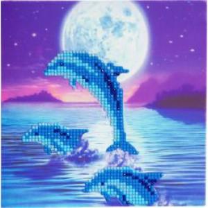 Set creativ tablou cu cristale Dolphin Pod 18x18cm Craft Buddy
